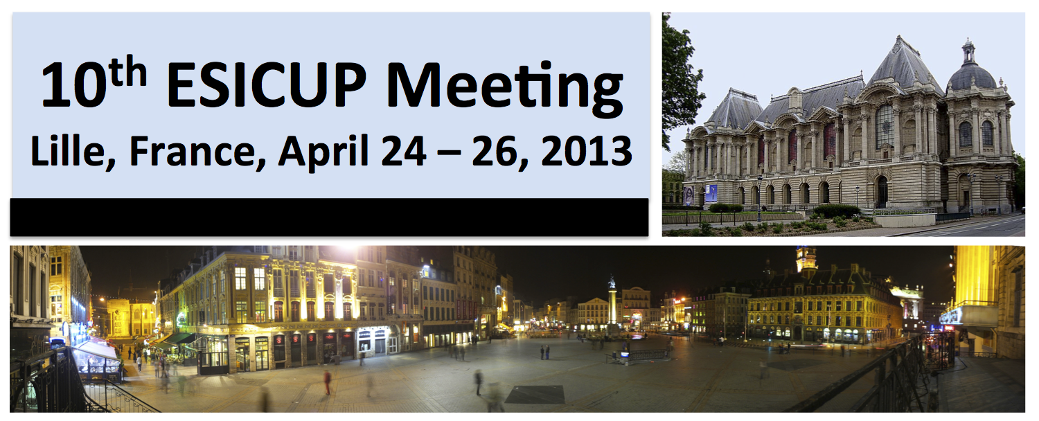 10th ESICUP Meeting