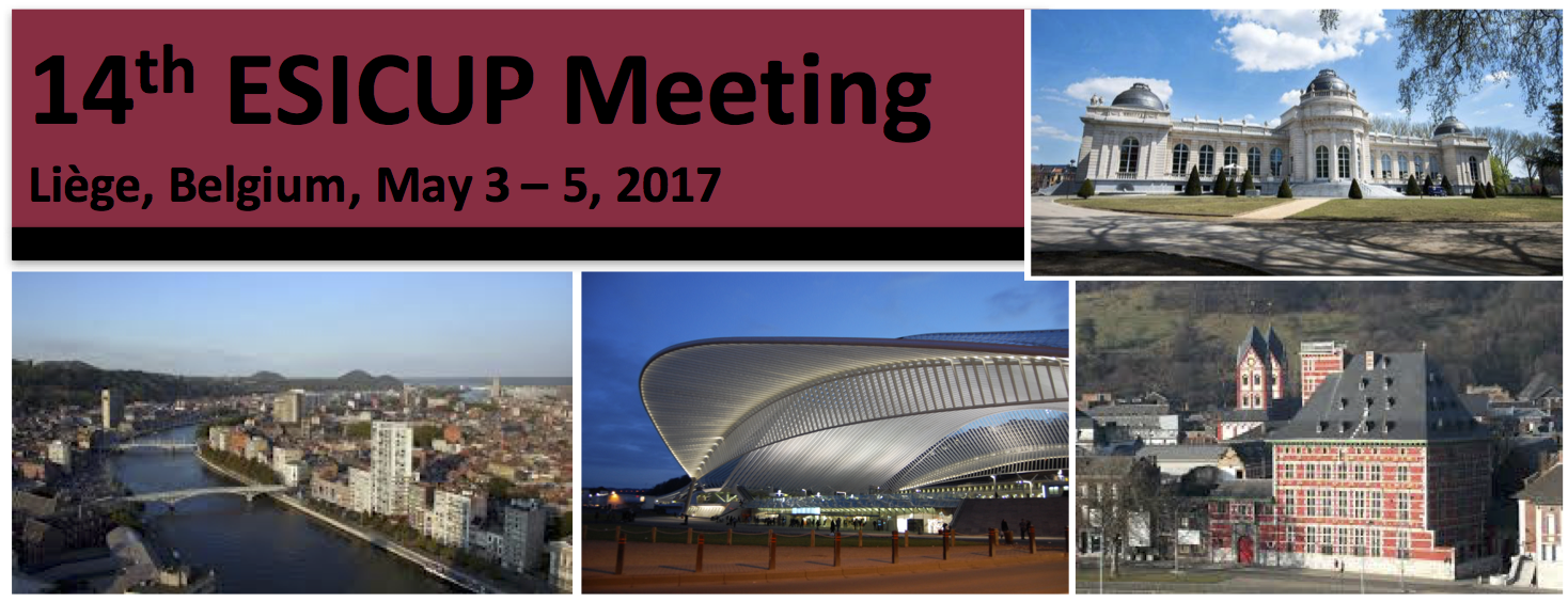 14th ESICUP Meeting