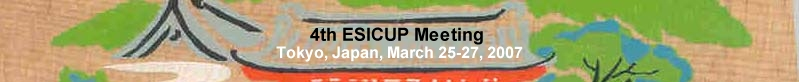4th ESICUP Meeting