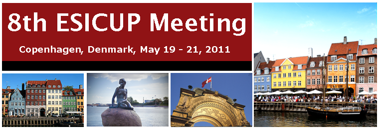 8th ESICUP Meeting