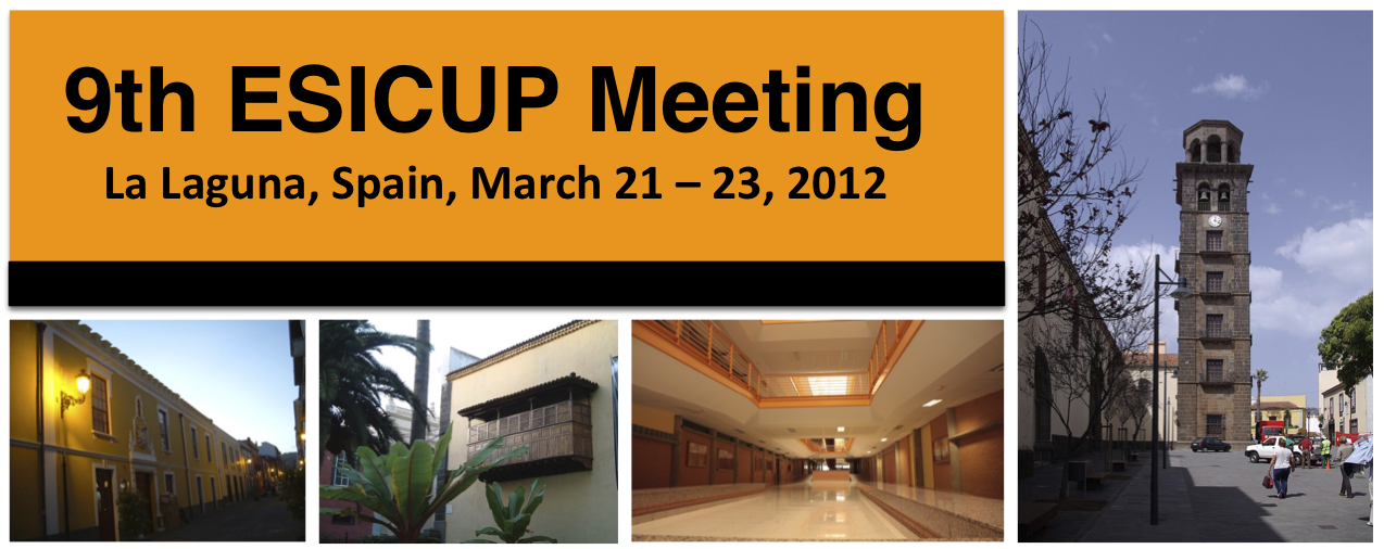 9th ESICUP Meeting