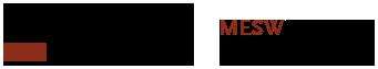Mestrado em Engenharia de Software Logo