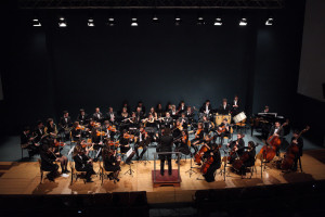 orquestra_classica©susana_neves